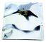 SCS Moisture Barrier Bag Dri-Shield 2700, 7.0 Mil, 15 In. X 18 In., 100Ea